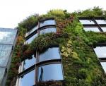 Проектиране на живи фасади