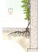 Проектиране на вертикална градина