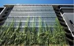 Проектиране на вертикални живи градини