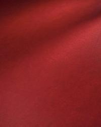 Червен линолеум